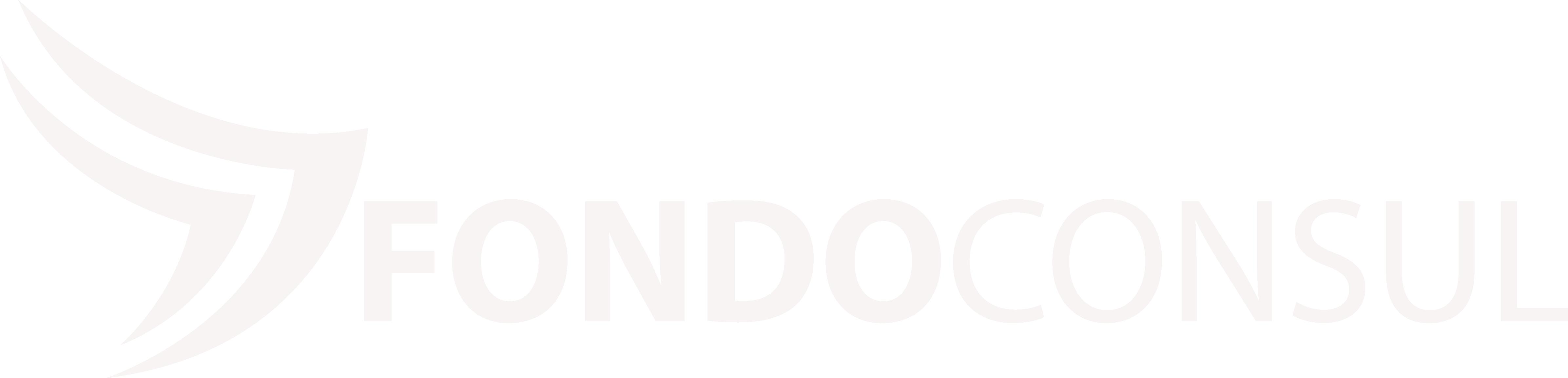 FONDOCONSUL